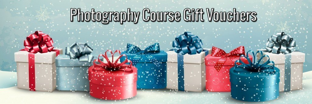 Christmas photography vouchers